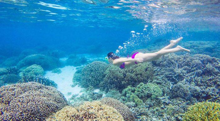 Oslob & Sumilon Island i Filippinerna